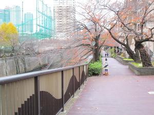 目黒川歩道.JPG